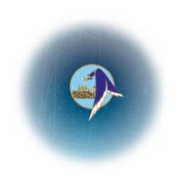 fond-bleu-plan-site-v2_800_web